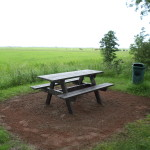 Picknicktafel Westerdijkshorn